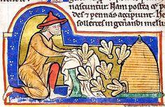 Morgan Library, MS M.81, Folio 58r