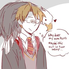 Hetalia/Harry Potter Lol. *Speaks slowly so the idiot can understand* Alfred, that is an eagle, not an owl, dear America.