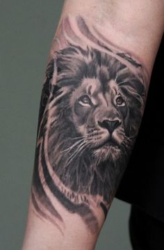 #Lion B&G #Realistic #tattoo #tattoodüsseldorf Living Illustrations Tattoo & Piercing Atelier Düsseldorf Stadtmitte Oststraße 114 // 40210 Tel.: 021191187609 Facebook: livingillustrationstattoo
