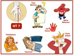 HT 7 – Shen Men, the gate of the mind! Awesome acupuncture point to calm the mind, improve memory, and clear heat especially from the heart.