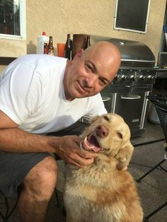 Golden Retriever Lost for 20 Months is home Safe!