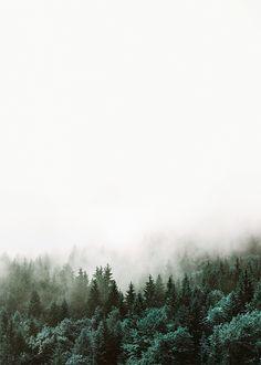 Affiches, posters et gravures en ligne. Décoration scandinave. Photographie avec forêt et nature