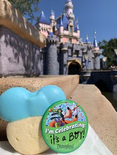 Disneyland Sleeping Beauty's Castle gender announcement it's a boy Disney gender reveal