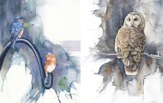 Biologist By Day Paints Watercolor Birds By Night-  by Anne Balogh