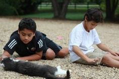 Zoos can be a busy hub of activity, and parents might worry that skipping the zoo means their children are missing out. Here are 6 activities to do instead. Important Life Lessons, Mixed Emotions, Pet Loss, All About Cats, My Cousin, Activities To Do, Talking To You, Animals For Kids, Kids Learning