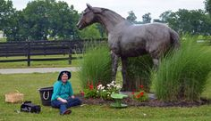 No matter where you live, there are ways for you to help retired racehorses.