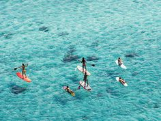 paddle boarding... I've never done it in the ocean. Only quiet waters of inter-coastal, Fort Lauderdale...