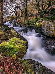 Autumn Forest stream Crafnant north Wales UK. Source plus.google.com