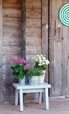Kymmenen päivää. Niin se vain aika juoksee, eikä kamera liiemmin ole viime aikoina käpälässä pysynyt. Edellisestä blogihetk... Garden Cottage, Marimekko, Indoor Plants, Flowers, Summer, Puzzle, Romantic, Inspiration, Gardens