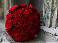 Best Red rose pic ideas on Pinterest Ensemble learning Solo