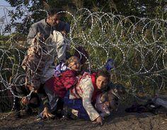 لاجئون سوريون يعبرون من صربيا الى المجر عبر سياج شائك , 27\ آب \ 2015