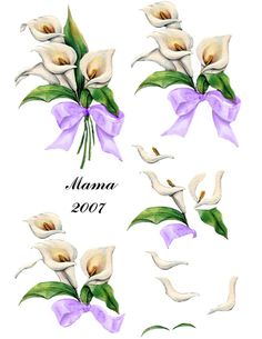 lillies & ribbon