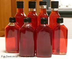 This year's plum brandy is mighty fine. It's really more of a liqueur than a brandy, and we make it whenever we can get our hands on some President plums… The process is simple & Plum Recipes, Fruit Recipes, Wine Recipes, Canning Recipes, Homemade Alcohol, Homemade Liquor, Fun Drinks Alcohol, Alcohol Recipes, Yummy Drinks