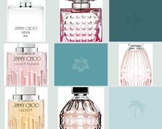 Jimmy Choo Men, Shops, Perfume, Beauty, Flowers, Decor, Shopping, Beleza, Decorating