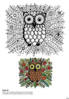 Cute Florabunda owl free colouring sheet