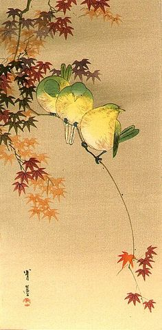 Japanese art Green Birds on Maple by Seitei (Shotei) Watanabe 1851-1918 Japan