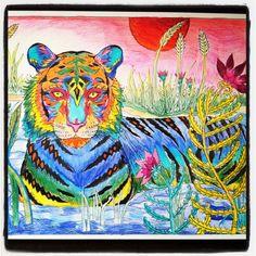 Tiger Art