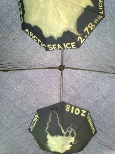 Arctic sea ice, umbrellas in the roof of the library gazebo