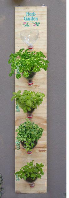 Clever hanging herb garden