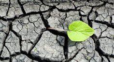 """Le développement durable né du rapport de Brundtland en 1987 et consacré par le sommet de Rio en 1992 est défini comme """"un développement qui répond aux besoins du présent sans compromettre la capacité des générations futures de répondre aux leurs"""". Le développement durable né du rapport de Brundtland en 1987 et consacré par le sommet de Rio en 1992..."""