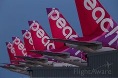 Airbus The align of Peach wings in KIX. Peach Aviation, Osaka, Aircraft, Commercial, Wings, Branding, Aviation, Brand Management, Ali