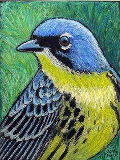 9x12 Original Bird Painting Oil Pastels by AndeHallFineArt