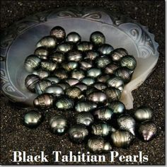 Tahitian Saltwater Pearls