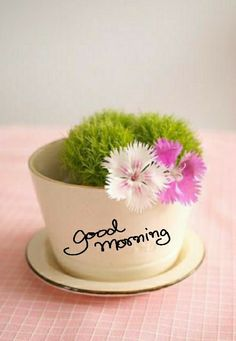 Good Morning Flowers, Good Morning Images, Night Pictures, Buddha Meditation, Good Morning Greetings, Morning Quotes, Morning Coffee, Tuesday, Good Morning Wishes