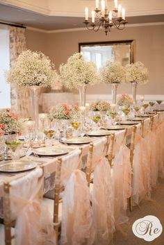 Baby's Breath and Crystals :  wedding babys breath blush chair sashes flowers inspiration lace pdestal vase peach pewter reception roses trumpet vases vintage 856288 584045558291613 1907806513 O7cover