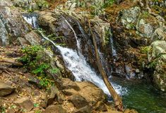 The 10 Best Shenandoah National Park Hikes - The Globetrotting Teacher Shenandoah National Park, Park Trails, Hiking Trails, Hiking In Virginia, East Coast Road Trip, National Parks Usa, Happy Trails, Picnic Area
