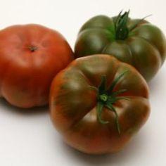 Tomato - Stealth