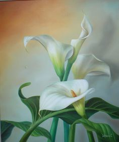 LAMINAS... Y TRABAJOS CON FLORES (pág. 147) | Aprender manualidades es facilisimo.com Oil Painting Pictures, Easy Paintings, Calla Lillies, Calla Lily, Elegant Flowers, Beautiful Flowers, Flower Images, Flower Art, Watercolor Flowers
