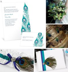 Dawn blog article full of tips and tricks for planning the perfect peacock themed wedding!