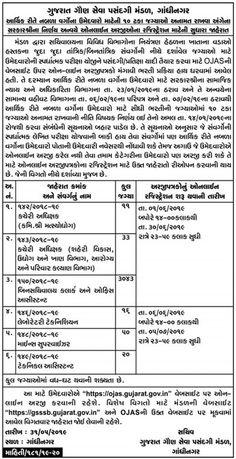 GSSSB Bin Sachivalay Clerk Syllabus   Gujarat Result