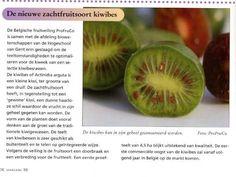 over het Belgische initiatief verscheen op 3 oktober 2008 een klein artikel in het Nederlandse vakblad 'Fruitteelt'