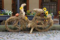 Street-Art-in-Bamberg-Germany