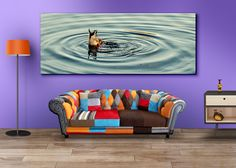 i saw this Duck diving and bobbing at Cropston Reservoir in Leicestershire, and managed to catch him like this. I'm not sure if he would consider it his best side? - by Iain Merchant by Iain Merchant - See more at: http://shop.photo4me.com/668533/canvas#sthash.wT4D1VG7.dpuf
