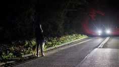 ECHO tech news: FORD'S ADVANCED LIGHTING SYSTEM FOR SAFER NIGHT DR...