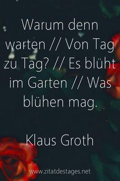 """Das heutige Zitat des Tages lautet: """"Warum denn #warten // Von Tag zu Tag? // Es blüht im #Garten // Was blühen mag."""" (Klaus #Groth) #KlausGroth #KlausGrothZitate #GartenZitate #WartenZitate #ZitatDesTages #BerühmteZitate #Sprüche #Zitate #ZitateZumNachdenken #QuoteOfTheDay #Spruchbild #Sprüchebilder"""