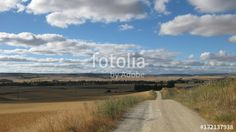 Paisajes veraniegos. #fotolia #sold #photo #Photo #photography #design #photographer #buy #background #Landscapes #summer #green #fields #roads #colorful #buy #background
