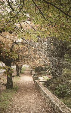 Blackheath NSW Australia Landscape Photos, Cemetery, Railroad Tracks, Landscapes, Australia, Top, Travel, Memorial Park, Scenery