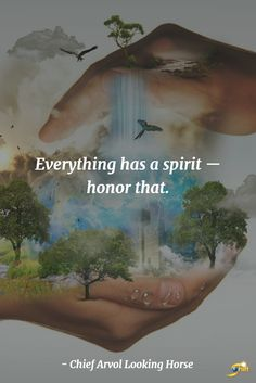 """Everything has a spirit - honor that."" - Chief Arvol Looking Horse  http://theshiftnetwork.com/?utm_source=pinterest&utm_medium=social&utm_campaign=quote"