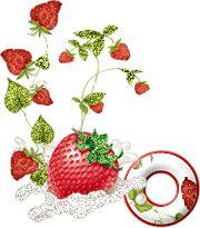 alphabets fraises