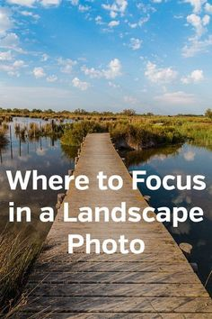 Where to Should in a Landscape Photos. Where should I focus? Photography tips, how to, learning, lessons, sharpness, depth of field, nature. #landscapephotography #photographytips #photographylessons