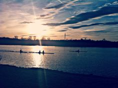 #Regattastrecke #Rudern #Sonnenuntergang