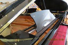 Bom dia! Até 28 de Fevereiro todos os pianos da marca Pearl River têm um desconto de 15% no Salão Musical de Lisboa. Venha escolher o seu piano!