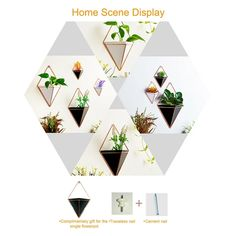 Give your living room some touch or natural beauty and a sense of the nature with our Geometric Flower vase wall Decor. Best Indoor Wall Geometric Flower Pot and Flower Pot Holder, Decorated Flower Pot Free Shipping + 15% Discount. Coupon Code: D2D15 Ceramic Wall Planters, Hanging Planters, Plant Wall, Plant Decor, Uk Plant, Faux Succulents, Planting Succulents, Geometric Flower, Geometric Wall