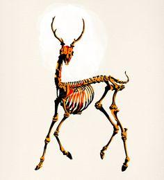 """Deer"" by Alvaro Tapia Hidalgo on Society6."