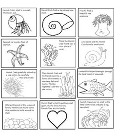 A House For Hermit Crab Eric Carle Week Pinterest House - hermit crab coloring pages printable