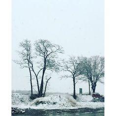 Instagram photo by @fivestar.netcafe via ink361.com